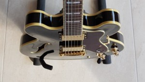 Read more about the article Picking an electric guitar (again)