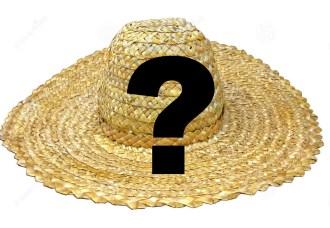 traditional-ukrainian-straw-hat-24094340