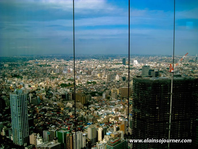 Tokyo Skyline from Metropolitan Government Offices