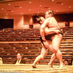 My First Sumo Wrestling