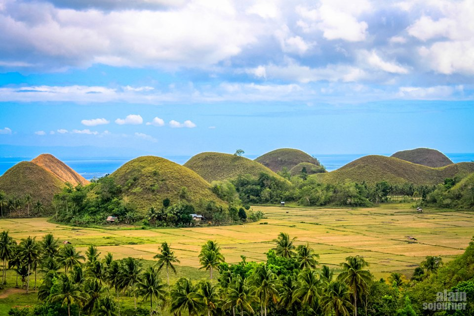 The Chocolate Hills - View from Sagbayan Peak