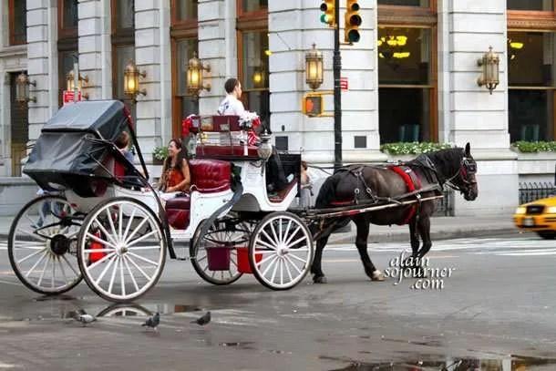 Romance in New York.