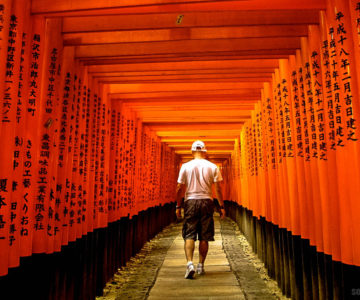 The winding path of Fushimi Inari Taisha in Kyoto, Japan.