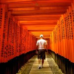The Winding Path of Fushimi Inari Taisha