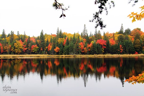 Algonquin Park Fall colors is so breathtaking.