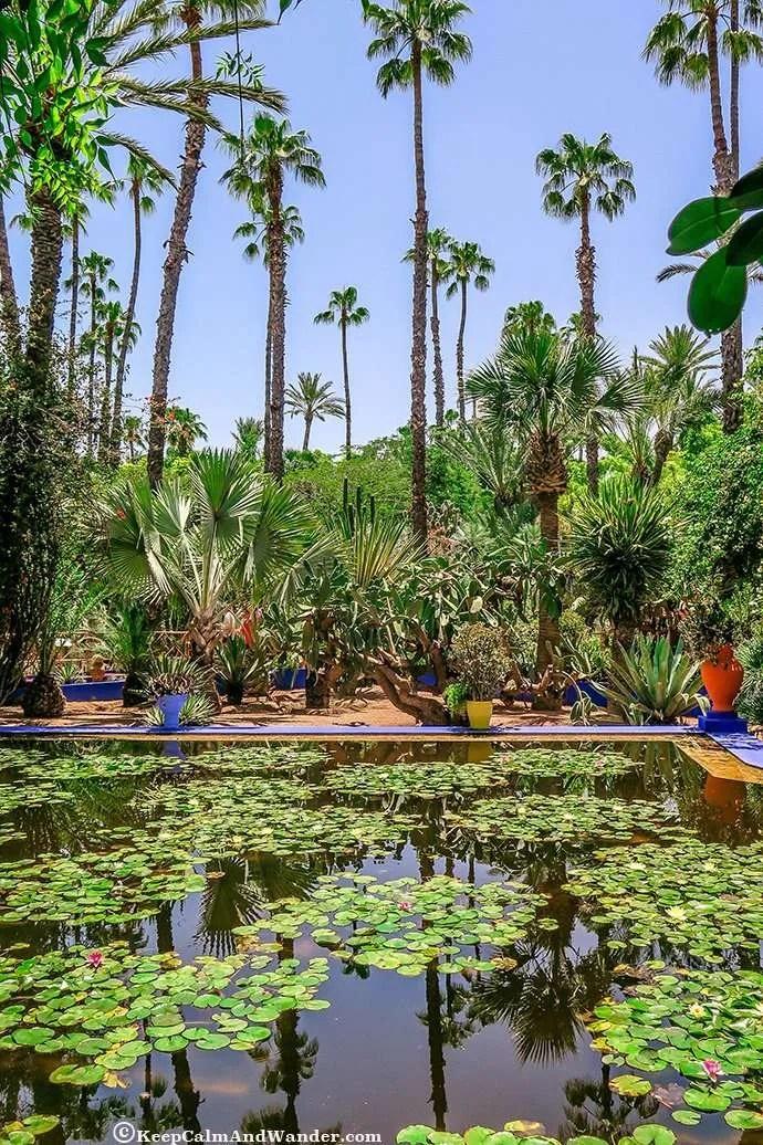 Majorelle Garden in Marrakech - Here Lies Yves St Laurent (Morocco).