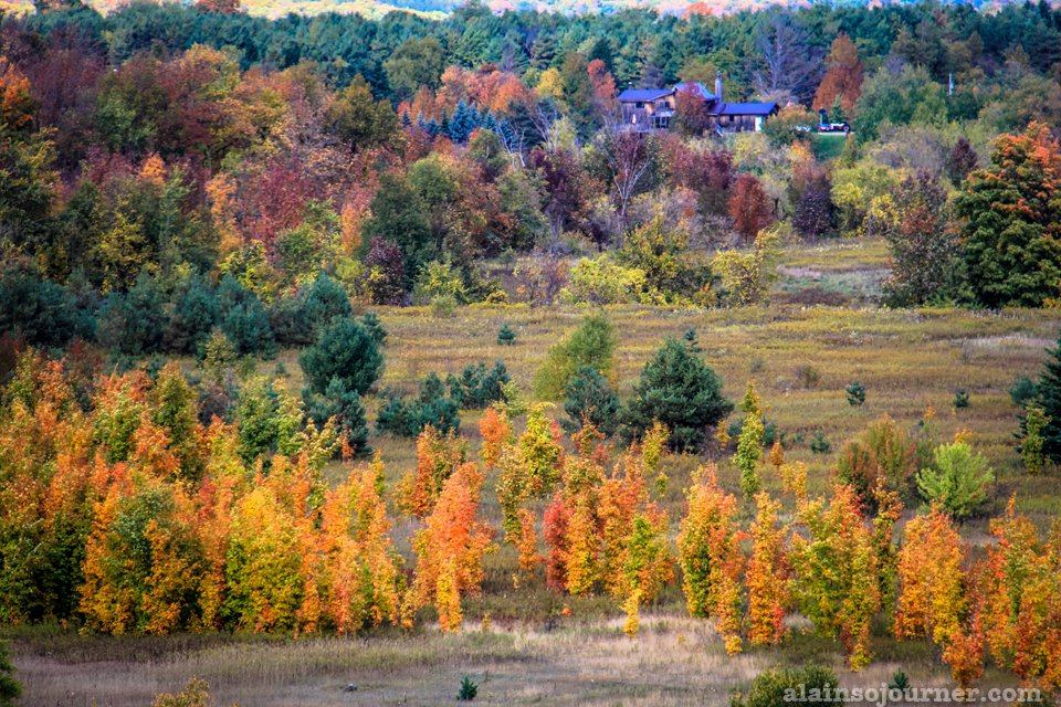 Fall Colours in Ontario / Fall Colours in Toronto
