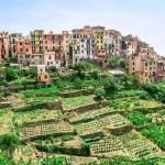 Corniglia is the Oldest Village in Cinque Terre Mentioned in Decameron