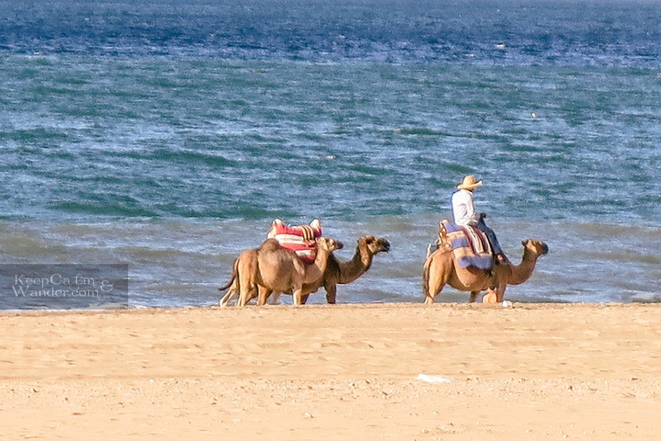 5 Things to do in Tangier (Waterfront Beach in Tangier, Morocco).