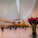 10 Interesting Facts About the Oculus in New York City