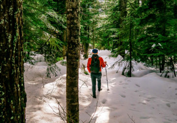 Travel Blog Hollyburn Lodge Hiking Trail in Winter