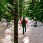 Photos: The Hollyburn Lodge Hiking Trail in Winter