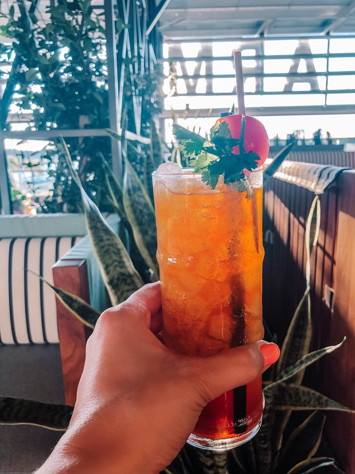 The West Denver Swizzle at M.Bird, the new rooftop bar on top of Armature Works in Tampa, Florida
