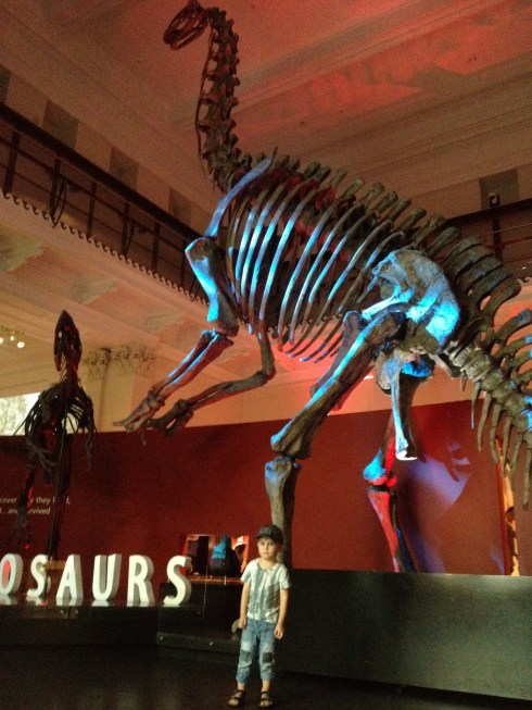 visiting dinosaurs at the museum