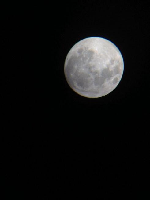 almost full moon whangarei