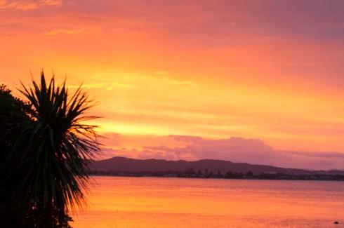 sunset whangarei