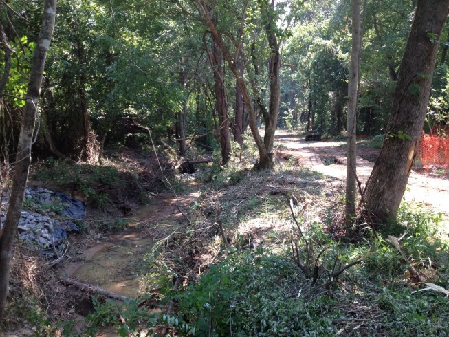Section of upper Torrence Creek, 2012, before restoration.