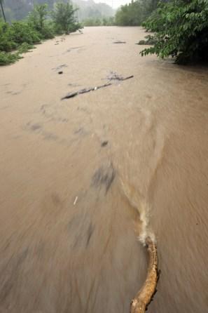 A July 2010 flood on Little Sugar Creek at Hillside Avenue. Photo: Nancy Pierce