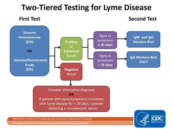 The CDC recommends two-tiered testing for Lyme disease.