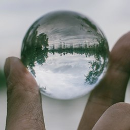 transparencia organizaciones