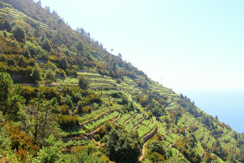 Roadtrip_Italien_S (4 von 24)