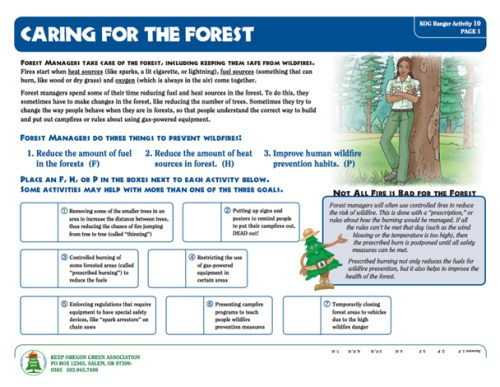 preview of Caring For The Forest