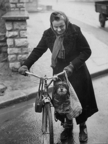 ralph-crane-lady-pushing-her-bicycle-with-puppy-riding-in-bag