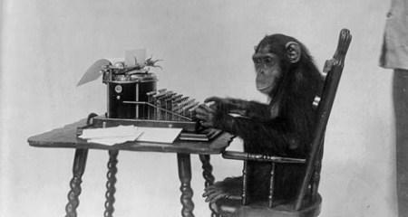 chimp-entertainment-resized