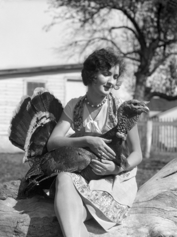 h-armstrong-roberts-woman-in-dress-and-apron-holding-a-full-grown-turkey-in-her-lap_i-G-56-5630-LH6MG00Z