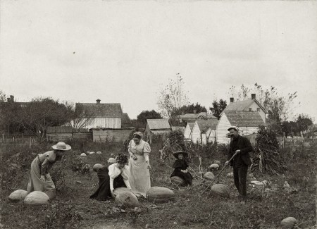 in-the-pumpkin-field-at-lewes-delaware-photographers-wife-daughter-and-friends-1898-james-bartlett-rich-philadelphia-1866-1942-2