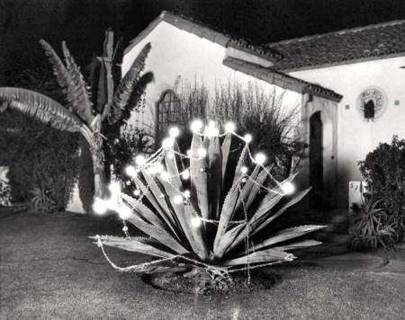 bh-19311