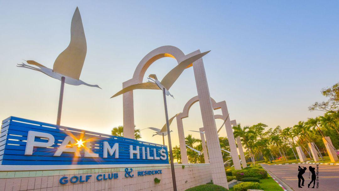 Palm Hills Banner