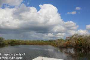 Lamanai boat ride to Orange walk (5 of 11)