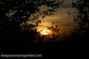 greenridge sunset (4 of 13)