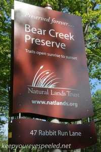 Bear Creek preserve  (1 of 59)