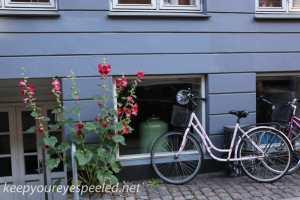 Copenhagen Denmark morning   walk July 30 2015 (30 of 42)