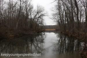 PPL Wetlands  (39 of 41)