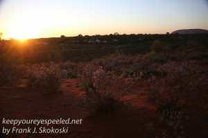 Desert gardens sunrise -23