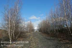 Railroad hike April 26 2016 -11