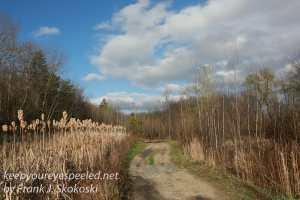 Railroad hike April 26 2016 -29