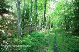 Weiser State Forest -34