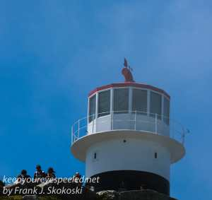 capetown-to-cape-of-good-hope-27