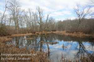 ppl-wetlands-23