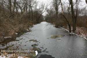 ppl-wetlands-31