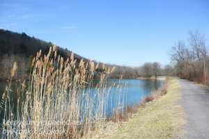 PPL Wetlands-27