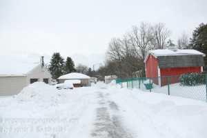 blizzard walk Marh 14 afternoon -28