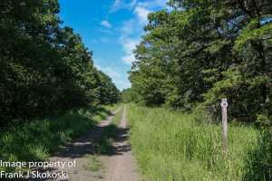 Black Diamond section of D&L Trail