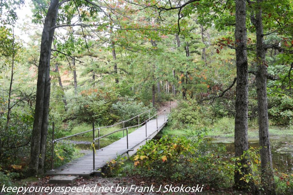 bridge over creek at Community park