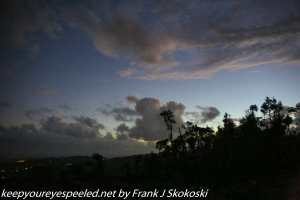 clouds over rain forest at dawn