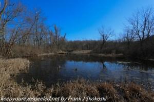 blue sky and pond